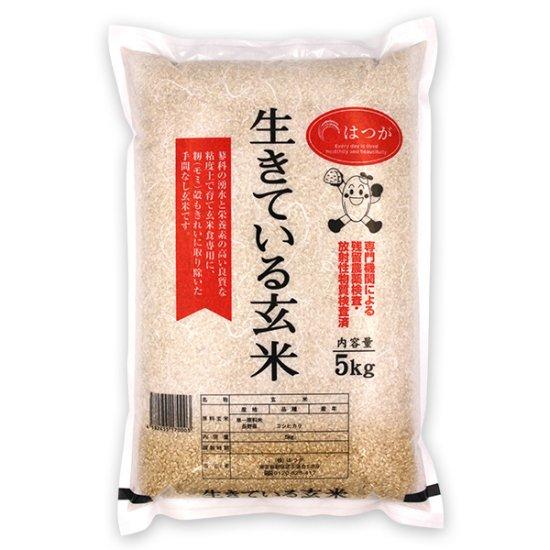 生きている玄米5kg ☆令和元年産☆