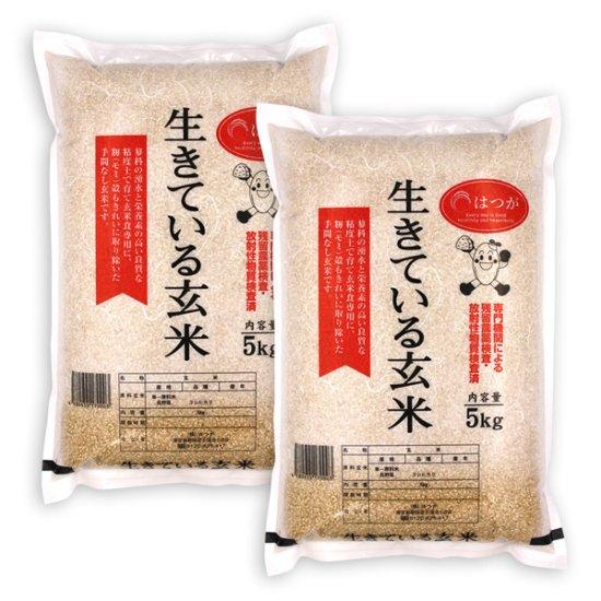 生きている玄米10kg ☆令和元年産☆