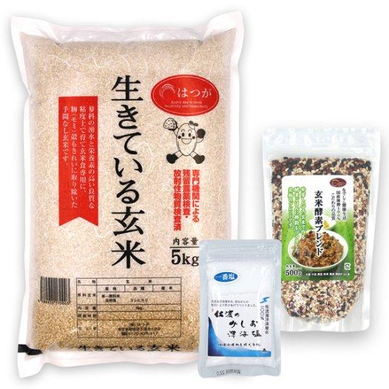 玄米酵素ごはんセットB(玄米酵素ブレンド500g + 天然塩50g + 生きている玄米5kg) ☆令和元年産☆