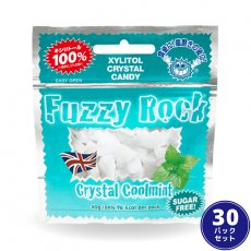 Fuzzy Rock(ファジーロック) クールミント味【30パックセット】