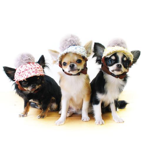 犬の帽子【GARDEN OF EDEN×GODPIVA】フ...