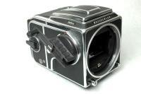 Hasselbladハッセルブラッド503CW+新A12マガジン+WL