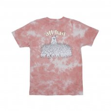 <img class='new_mark_img1' src='//img.shop-pro.jp/img/new/icons5.gif' style='border:none;display:inline;margin:0px;padding:0px;width:auto;' />ALL HAIL TEE (ROSE ACID WASH)