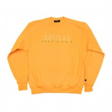 <img class='new_mark_img1' src='//img.shop-pro.jp/img/new/icons5.gif' style='border:none;display:inline;margin:0px;padding:0px;width:auto;' />HARDWEAR CREWNECK - GOLD