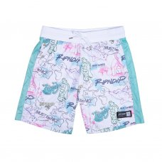 <img class='new_mark_img1' src='//img.shop-pro.jp/img/new/icons5.gif' style='border:none;display:inline;margin:0px;padding:0px;width:auto;' />GOALASO NYLON SOCCER SHORTS (WHITE/MINT)