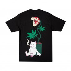 <img class='new_mark_img1' src='https://img.shop-pro.jp/img/new/icons5.gif' style='border:none;display:inline;margin:0px;padding:0px;width:auto;' />HERB EATER TEE - BLACK