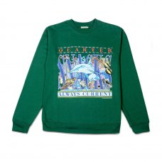 <img class='new_mark_img1' src='https://img.shop-pro.jp/img/new/icons5.gif' style='border:none;display:inline;margin:0px;padding:0px;width:auto;' />ALWAYS CURRENT CREWNECK SWEATSHIRT - GREEN