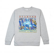 <img class='new_mark_img1' src='https://img.shop-pro.jp/img/new/icons5.gif' style='border:none;display:inline;margin:0px;padding:0px;width:auto;' />ALWAYS CURRENT CREWNECK SWEATSHIRT - HEATHER GREY