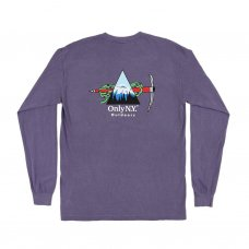 <img class='new_mark_img1' src='https://img.shop-pro.jp/img/new/icons5.gif' style='border:none;display:inline;margin:0px;padding:0px;width:auto;' />WINTER EXPEDITION L/S T-SHIRT (VINTAGE PLUM)