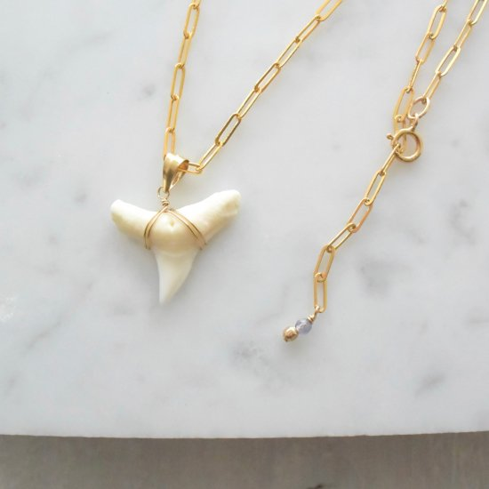 〈14KGF-Necklace〉Shark tooth
