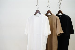 AURALEE(オーラリー)LUSTER PLAITING TEE/White/Light Brown/Black/