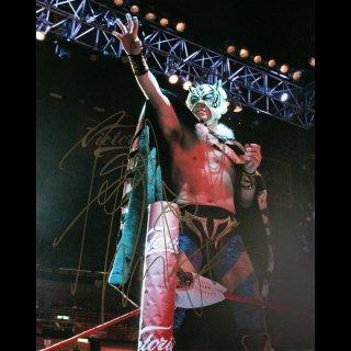 Tiger Mask � Autographed Photo #1 / 3代目タイガーマスク サイン入ブロマイド #1