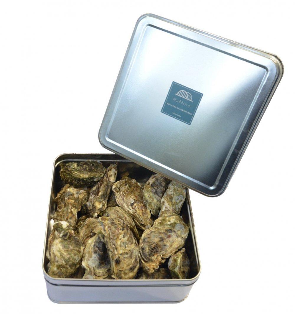 殻付き牡蠣 3kg(約30個)