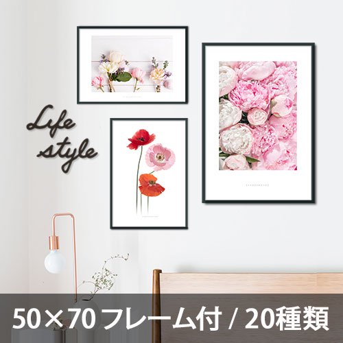 <img class='new_mark_img1' src='//img.shop-pro.jp/img/new/icons5.gif' style='border:none;display:inline;margin:0px;padding:0px;width:auto;' />【インテリアポスター】フラワーコレクション 50×70 フレーム付