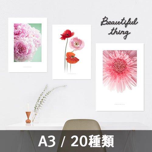 【インテリアポスター】フラワーコレクション A3 ※フレームなし
