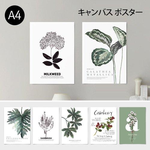 【キャンバス素材ポスター】ボタニカルコレクションVo.1 A4