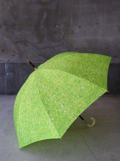 イイダ傘店 そら豆 雨傘
