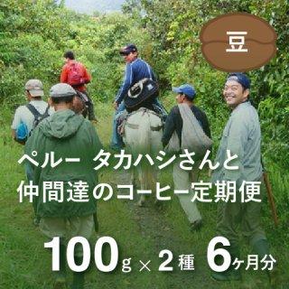 <b>ペルー・高橋さんのコーヒー定期便 【Liteコース】 毎月100g×2種類  6か月分(豆のまま)</td></b>