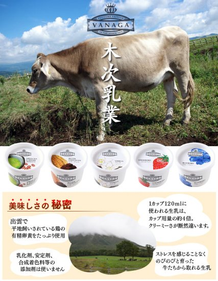 木次乳業 VANAGA ブルーベリー 【 島根県 】【画像4】