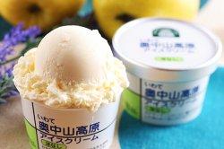 旬 果物アイスクリーム いわて奥中山高原 アイスクリーム 洋なし 【 岩手県 】