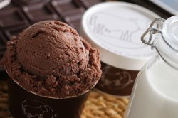 やまざと商品一覧 中洞牧場ミルクアイス チョコレート