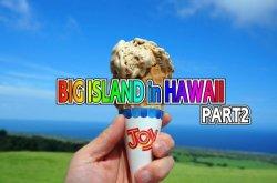 ブログ ビックアイランド(ハワイ島)1人ドライブ後編