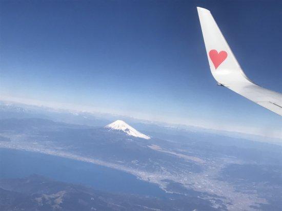岡山県から醍醐桜のジェラートが初入荷!【画像6】