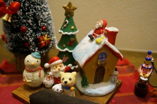 我が家のワンちゃんもメリークリスマス♪【画像14】