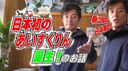 極選いちご 日本初のあいすくりんの誕生!