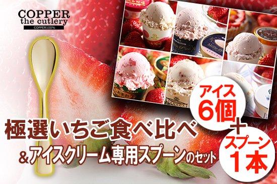 極選 いちごアイス 食べ比べ+アイスクリーム専用スプーン セット(6個+1本)