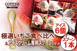 特別なセット(ギフトにも最適) 極選 いちごアイス 食べ比べ+アイスクリーム専用スプーン セット(6個+1本)
