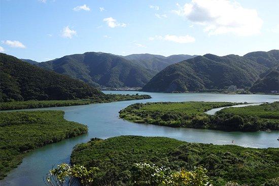 奄美大島の地下天然水「あまいろ」を使ったジェラート!【画像2】