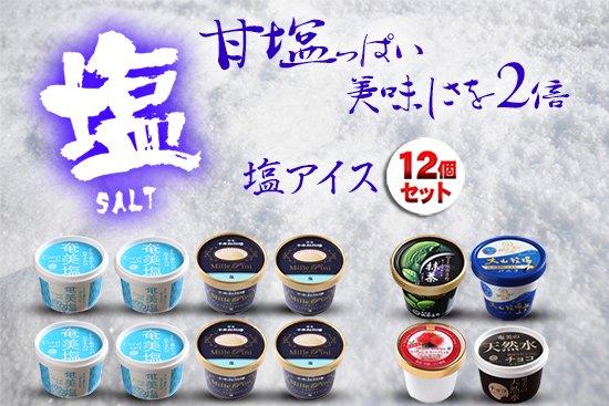 塩アイスセット+お口直し品(12個セット)
