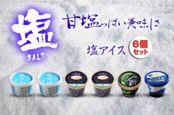 色々なアイスクリーム (エトセトラ) 塩アイスセット+お口直し品(6個セット)