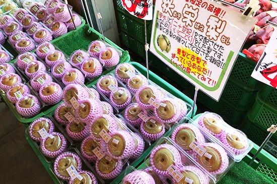 季節を感じさせる旬の果物アイス(梨・ぶどう)【画像5】