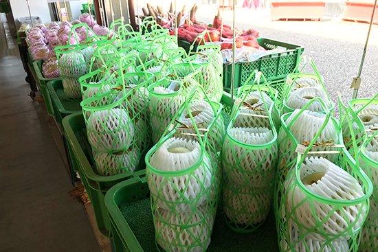 季節を感じさせる旬の果物アイス(梨・ぶどう)【画像6】