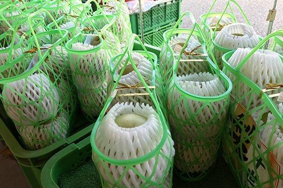 季節を感じさせる旬の果物アイス(梨・ぶどう)【画像9】