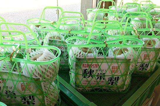季節を感じさせる旬の果物アイス(梨・ぶどう)【画像10】