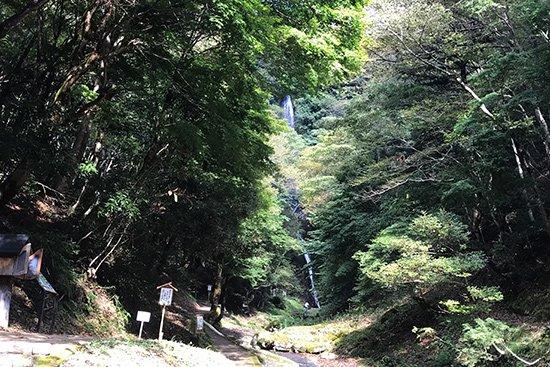 滝百選 猿尾滝で「天使の虹」発見!【画像6】