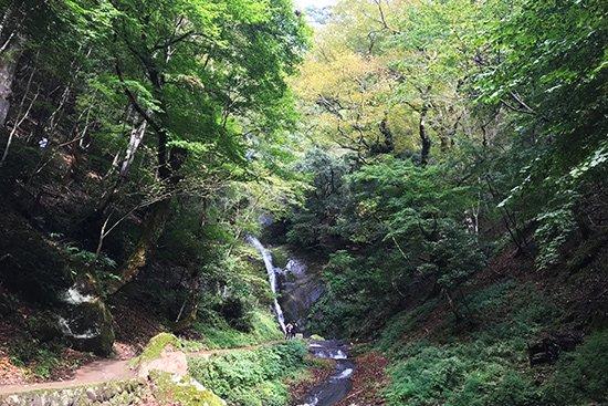 滝百選 猿尾滝で「天使の虹」発見!【画像8】