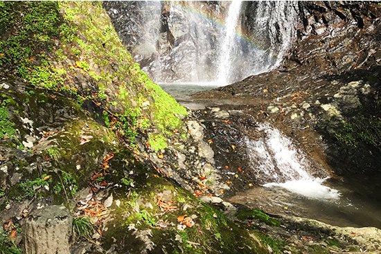 滝百選 猿尾滝で「天使の虹」発見!【画像10】