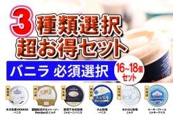 濃厚 チョコアイスクリーム 超豪華!3種類選択セット(A.バニラ必須)