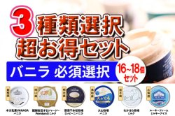 生産者-丹波篠山食品 【兵庫県】 超豪華!3種類選択セット(A.バニラ必須)