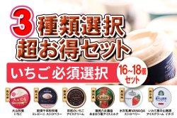 濃厚 チョコアイスクリーム 超豪華!3種類選択セット(B.いちご必須)