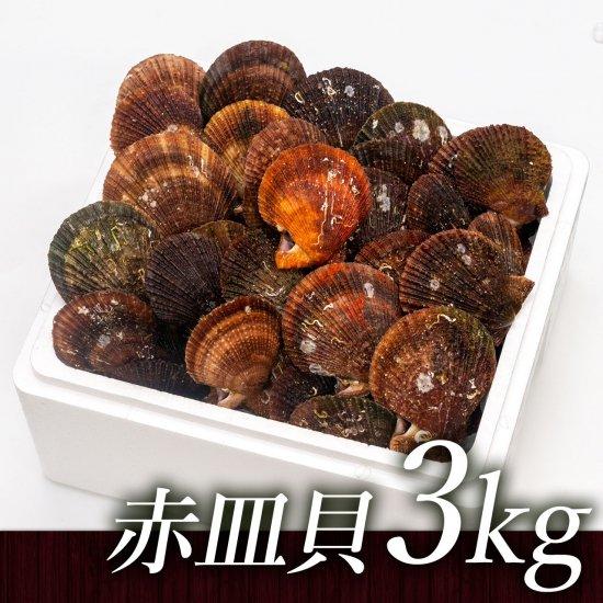 【水産物応援商品・送料無料】岩手県山田湾産 赤皿貝(3kg)[加熱用]