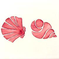 ポルトガルタイル(アズレージョ)【コンシャ・CO4】二枚貝と巻貝・ピンク