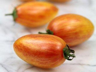 アーティサンブラッシュタイガー(トマト)の種: レッド