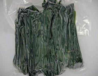 ランペ(パンダンリーフ)の生葉 *真空冷凍