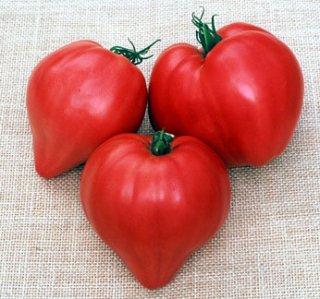 ピンクオックスハート(トマト)の種