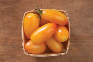 アーティサンブラッシュタイガー(トマト)の種: イエロー